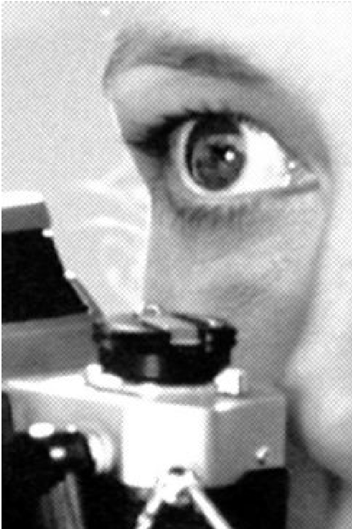 eyeFaye.jpg